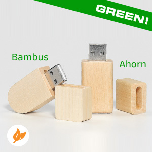 USB Stick Eco Line